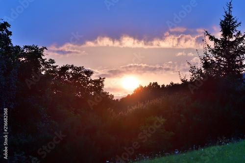 Fotobehang Bruin orange sunset over the forest twilight