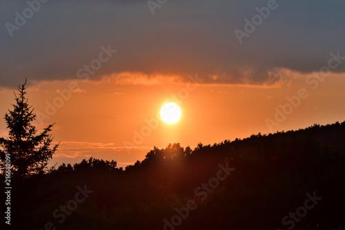 Canvas Oranje eclat orange sunset over the forest twilight
