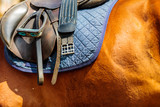 Detailed close up of horse saddle with stirrup