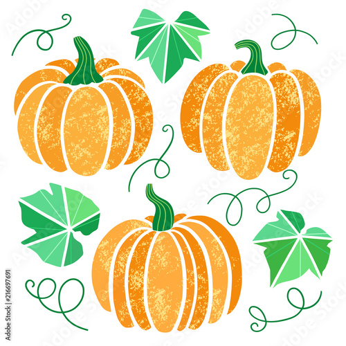Vector pumpkin illustration set isolated on white - 216697691