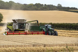Combine harvester working in a field of wheat - England poster