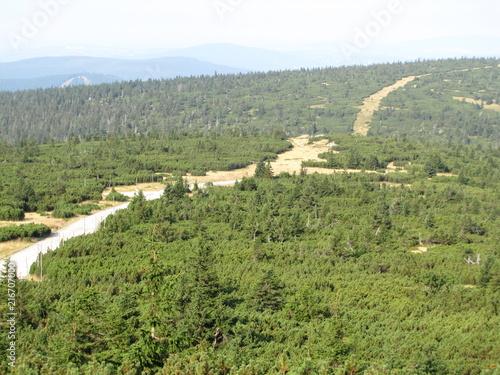 Canvas Pistache mountains
