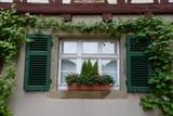Blumenfenster in Schwäbisch Hall