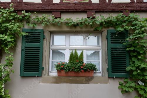 Foto Murales Blumenfenster in Schwäbisch Hall