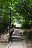 Rustic stairs climbing Erawan Falls, tropical forest in Kanchanaburi province, Thailand.