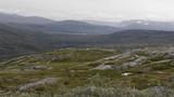 Dovrefjell-Sunndalsfjella-Nationalpark, Norwegen - 216732459