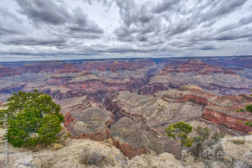 Fotobehang Bleke violet AMAZING view of the Grand Canyon National Park from the bottom looking up and viceversa