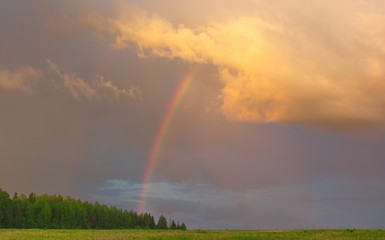 glowing clouds over the field and a rainbow © Владимир Филиппов