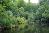 Small lake - 216772656
