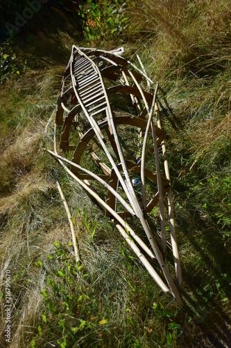 Skelett eines Paddelbootes in hohem Gras im Hochsommer - 216790670