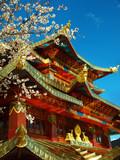tibetan monastery in shangri la  ,Yunnan ,china - 216793069