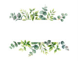 Watercolor vector hand painting horizontal banner with green leaves and branches. - 216794638