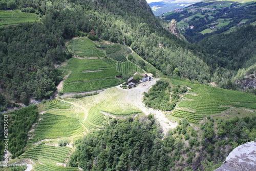 Winnica z winnicy domem w górach w świetle słonecznym