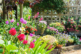 Beautiful backyard garden full of colorful flowers in pots and containers with the stone wall on the back, selective focus - 216799414