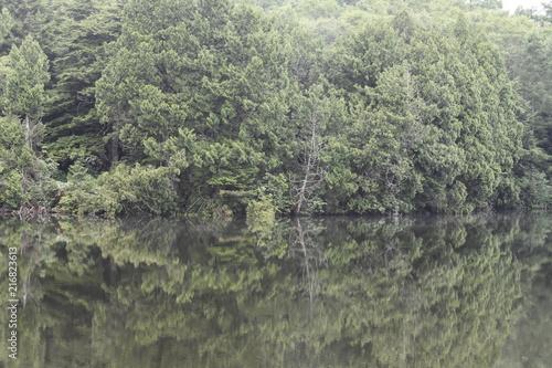 Foto Spatwand Olijf 信濃の湖