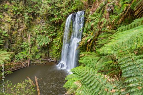 Beauchamp Falls Victoria Australia - 216824288