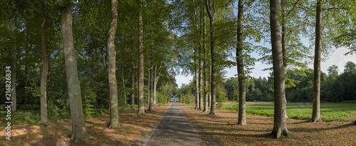 Panorama. Huis Westerbeek. Estate with lane. Maatschappij van Weldadigheid Frederiksoord - 216826834
