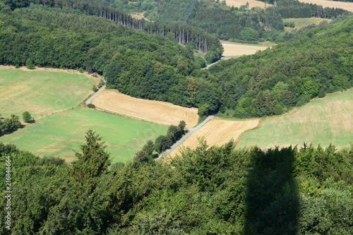 Canvas Pistache Ausblick von der Plattform des Gänsehalsturms