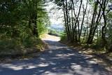 Feldweg am Waldrand