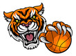 Tiger Holding Basketball Ball Mascot