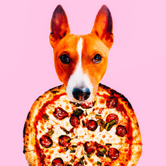 Contemporary visual art collage. Minimal concept. Head dog and pizza