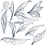 Collection of vector filigree magic wings - 216902476