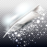 Vector  silver  glitter particles background with realistic feather - 216902819