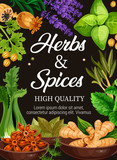 Premium quality herbs and spices seasonings poster - 216918071