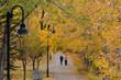 Two women strolling on a leafy footpath in Autumn