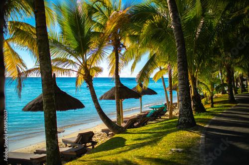 In de dag Tropical strand Palmenstrand