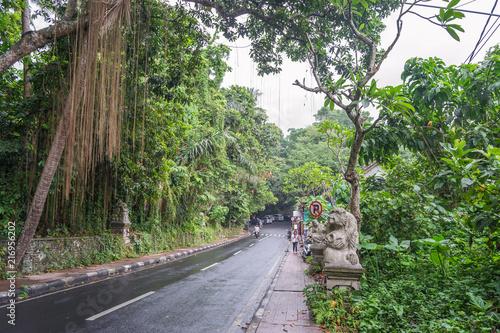 Aluminium Olijf Forest road