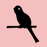parrot silhouette icon,vector drawing