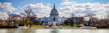 US Capitol 8 (Banner) - 216979649