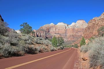 Road in Zion National Park, Utah