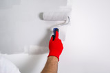 Painter hand painting a wall with paint roller - 217002876