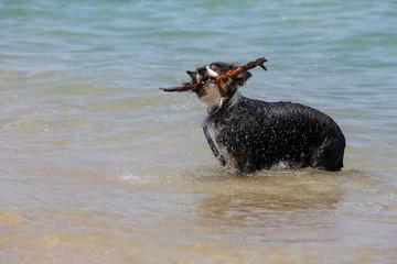 vacances d'été mer © litchi cyril