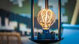 Sparkling Bulb Light - 217012074