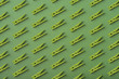 Quadro Pattern of green  clothes pins