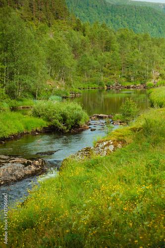 In de dag Bergrivier river in mountains, Norway.