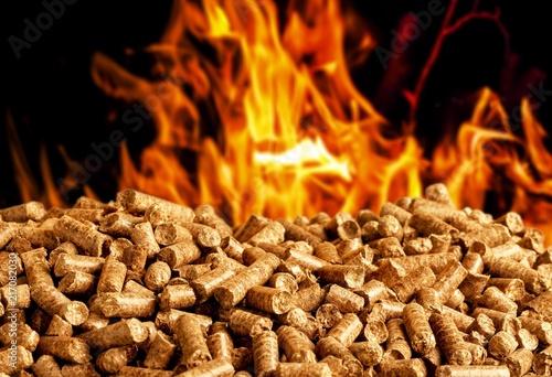 Leinwandbild Motiv Biomass.