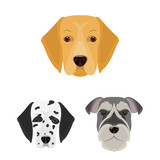 Dog breeds cartoon icons in set collection for design.Muzzle of a dog vector symbol stock web illustration.