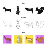 Horse, cow, cat, squirrel and other kinds of animals.Animals set collection icons in black,flat,outline style vector symbol stock illustration web.