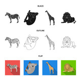 African zebra, animal koala, giraffe, wild predator, lion. Wild animals set collection icons in cartoon style vector symbol stock illustration web.