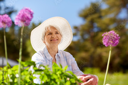 Foto Murales gardening and people concept - happy senior woman with allium flowers at summer garden
