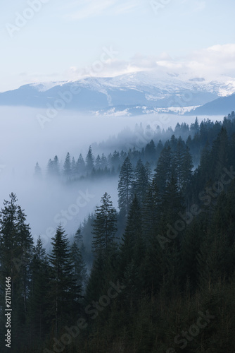 Foto Spatwand Lente Spring landscape with fog in the mountains