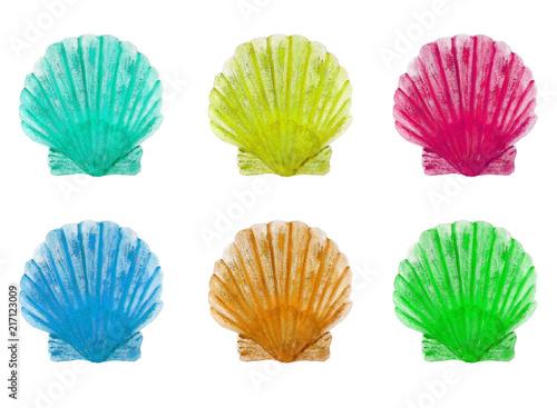 Set seashells watercolor - 217123009
