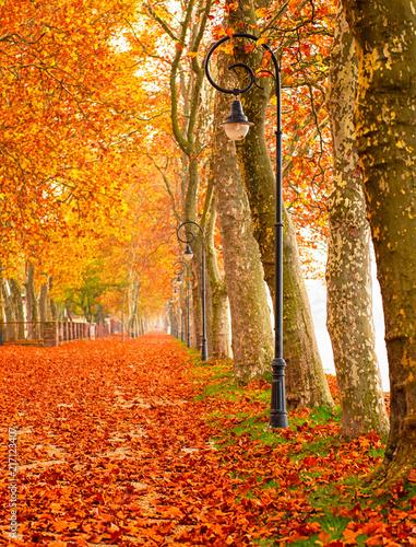 Fotobehang Herfst Nice autumnal urban scene