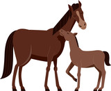 Horse Foal Illustration
