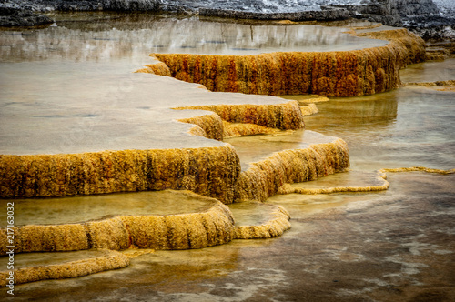 Foto Murales Mammoth Hot Springs in Yellowstone National Park