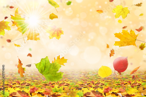 Plexiglas Geel Herbst 171